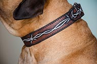 "Collare in pelle dipinto a mano ""Barbed Wire"" per Bullmastiff"