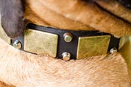 "Collare in pelle con decorazioni ""Solid Boss"" per Bullmastiff"