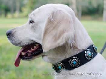 come scegliere il collare giusto per il cane negozio cani online negozio cani. Black Bedroom Furniture Sets. Home Design Ideas