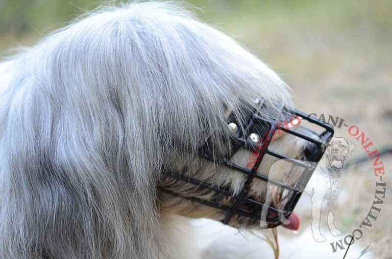 Museruola a cestello gommata per cane for Cane da pastore della russia meridionale