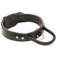 Collare in cuoio doppio con maniglia per cane forte e attivo