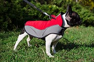 "Mantello in nylon ""Raincoat Cape"" per Bulldog Francese"