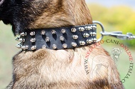 "Collare in pelle ""Spiked Holiday Collar"" per Malinois"