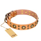 "FDT Artisan - Collare in cuoio ""Sophisticated Glamor"" per cane"