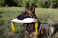 "Tug in gomma ""Interactive game"" per Malinois"