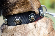 "Collare in nylon ""Exotic & Classic"" per Malinois"