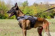 "Pettorina in nylon ""Support the Weak"" per Malinois"