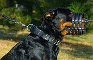 "Collare in cuoio largo 6 cm ""Cool Novelty"" per Rottweiler"