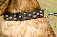 "Collare in pelle con coni troncati ""Fancy Studs"" per Malinois"