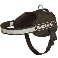 Pettorina per cani di servizio