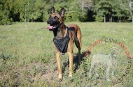 "Pettorina in vera pelle ""Working dog"" per Malinois"