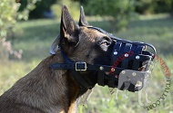 "Museruola in vero cuoio ""Managing Dog's Behavior"" per Malinois"